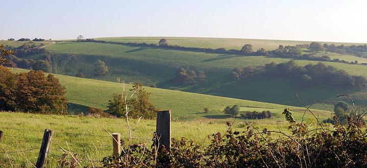 Oakfield Farm East Sussex